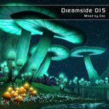 Dreamside 015