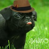 Devorando a los artistas- Samo
