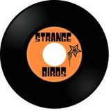 SpydaT.E.K. StrangeBirdsRadio Mix