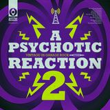 A Psychotic Reaction 2: More Garage Punk Nuggets '65-'67, in Stereo