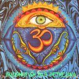 Dub Progressions no.2  Buddhafish B2B Bethelina