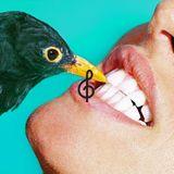 Aquecimento Franz Ferdinand by Tecla Music Agency for Queremos!