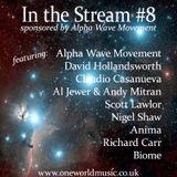 In the Stream #8