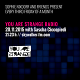 YOU ARE STRANGE RADIO w/ SASCHA CICCOPIEDI // 20.11.2015