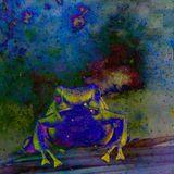 Frog: Quantaspace