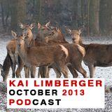 Kai Limberger Podcast October 2013