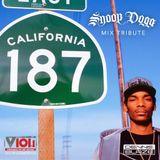 Snoop Dogg Birthday Tribute Mix 2018 (V101 Sacramento CA)