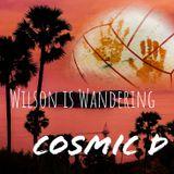 Wilson Is Wandering - Cosmic D