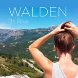 WALDEN / Mix by RIVA / 25.05.2015