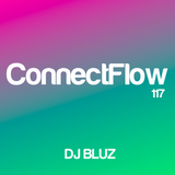 ConnectFlow Radio117