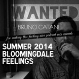 WANTED PODCAST DEEP HOUSE MIX 1 - Bruno Catani - Summer 2014 Bloomingdale Feelings