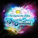 Electric Daisy Carnival - Hype Mix