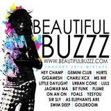 Beautiful Buzzz - January 2013 Mix