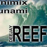DJ REEF  MINIMIX TSUNAMI