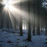 Licht im Winter@SolarBerlin-23.03.2013
