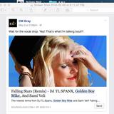 Falling Stars (Ext. Mix) - Side FX & Kim Cameron Remixed by DJ TL SPANX, Golden Boy Mike & Veli
