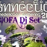 Biofa DJ SET - Connection Festival 2013