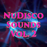 NuDisco Sounds Vol. 2