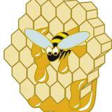 Paulinnate - Bees Wax