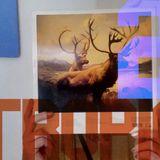 Tropicantesimo Live ft F Mammarella - Fanfulla 19 Novembre 17 - pt. 2