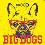 F45 FM Big Dogs   (The Triple A Collection) @Tripleasounds (Clean)