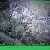 Massilia RE-7 SOUND # 5 - Hidden in the Wild Roots