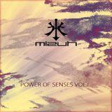 Mizuh - Power Of Senses Vol. 1
