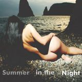 Summer In the Night (Erotic/Disco Sounds)
