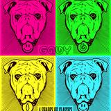 G.A.B.Y | 4 SHADES OF CLASSICS (Wooferland contest mix)