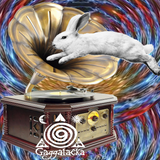 OGRIM IN THE MIX @ RADIOA GAGGA PSYCHEDELIC FREAKSHOW @ SEKTOREVOLUTION 210420191130