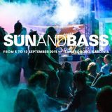 DJ RAYZE - SUNANDBASS 2015 DJ COMPETITION MIX