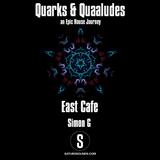 Simon_G guest mix@Quarks & Quaaludes on Saturo Sounds (April 2017)