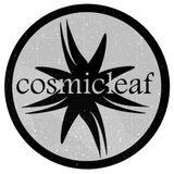 SIDE LINER - Cosmicleaf Records Series Vol.28