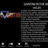 GANTINI IN THE MIX Vol.25