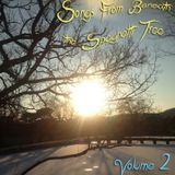 Songs From Beneath the Spaghetti Tree, Volume 2