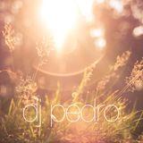 DJ-Pedro - Einfach gute Musik (vol.1)