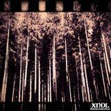 Zwischenfall Mix 2014