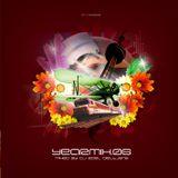 Topradio's Yearmix 2006 - mixed by Roel Dieltjens