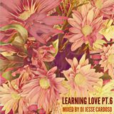 Learning Love Pt. 6