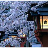 アカギの日本#1 Mix