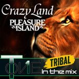 T-one in the mix Crazyland Tribal