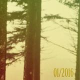 Januar ´16  Podcast