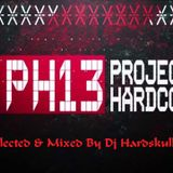 Project Hardcore 2013 (Selected & mixed by Hardskull)