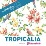 Tropicália - El Steinvorth - 28 Febrero 2015 - Primera parte