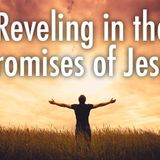 Reveling in the Promises of Jesus