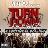 TURN DOWN FOR THUNDERCAT - JODY MASHUP