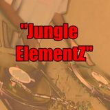 Danny Swift - Jungle Elementz - Vol 1 (Ragga dnb mix)