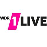 1LIVE DJ Session - Martin Solveig (31.08.2019)