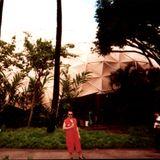 Hawaii Ransacked Vol Two