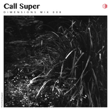 DIM008 - Call Super